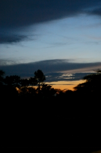 Sunset on the way home from the Serengeti